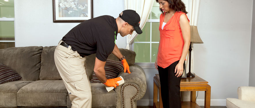 Shippensburg, PA carpet upholstery cleaning